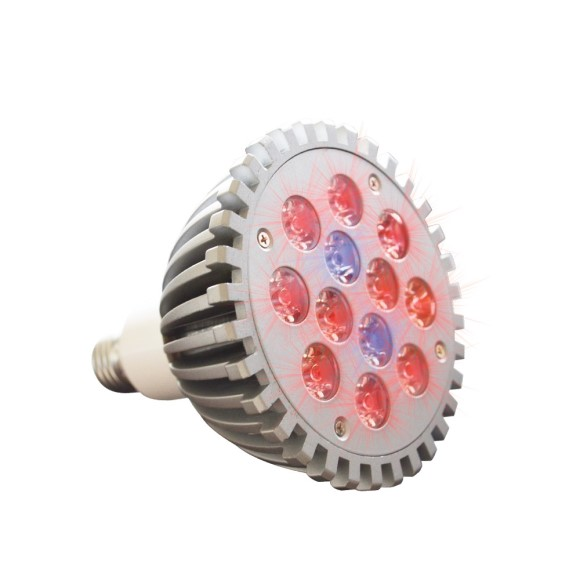 GrowSpot LED Grow Light