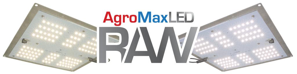 RAW-65-Banner
